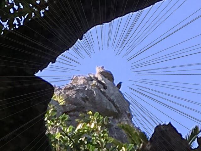 大石林山・猫岩3