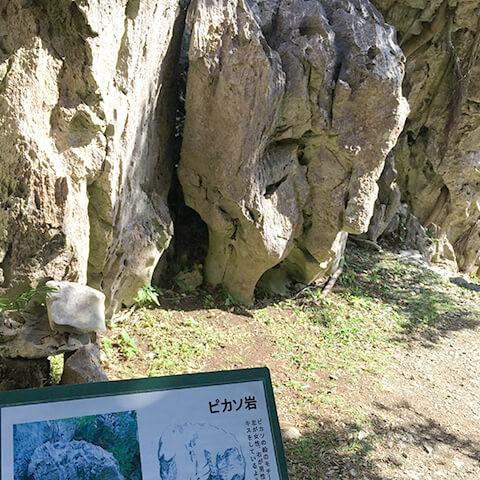 大石林山・ピカソ