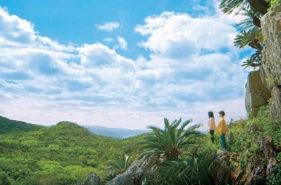 自然むき出し大石林山の歩き方|いくつ分かる?難解奇岩見立て