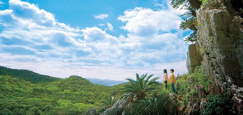 ライフツアー沖縄10大クーポン 大石林山