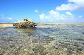 """家族で思い出づくり!沖縄の海を満喫する""""イノー遊び""""の楽しみ方"""