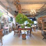 360度うっとり空間! 産婦人科から生まれた個性派カフェ「運天食堂」