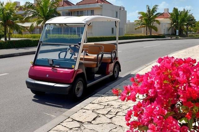カヌチャリゾート レンタルカートとブーゲンビリア