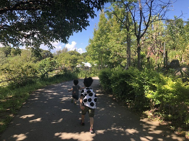 ネオパークオキナワ 園内を走り回る子ども
