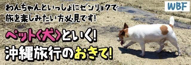 沖縄 ペット旅行 バナー