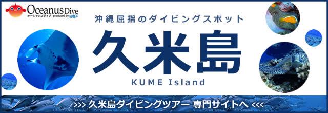 久米島 ダイビング バナー