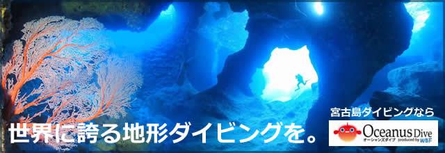 宮古島 地形ダイビング バナー
