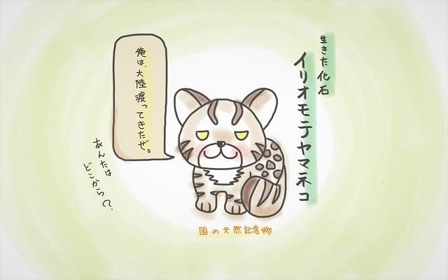 琉球王国 歴史 天然記念物 イリオモテヤマネコ