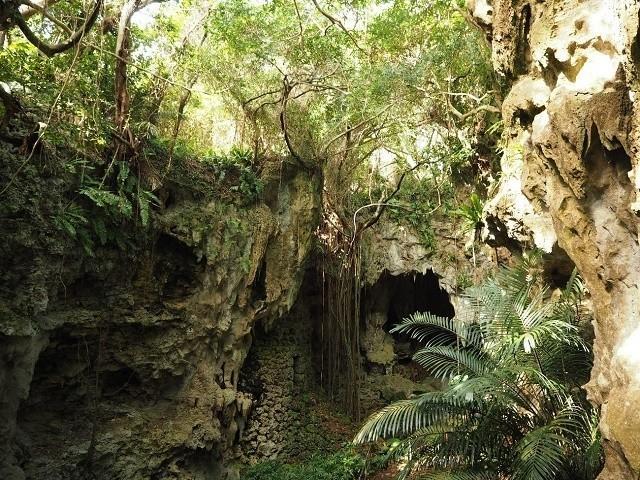 琉球王国 歴史 熱帯植物が鬱蒼と生い茂る ガンガラ―の谷