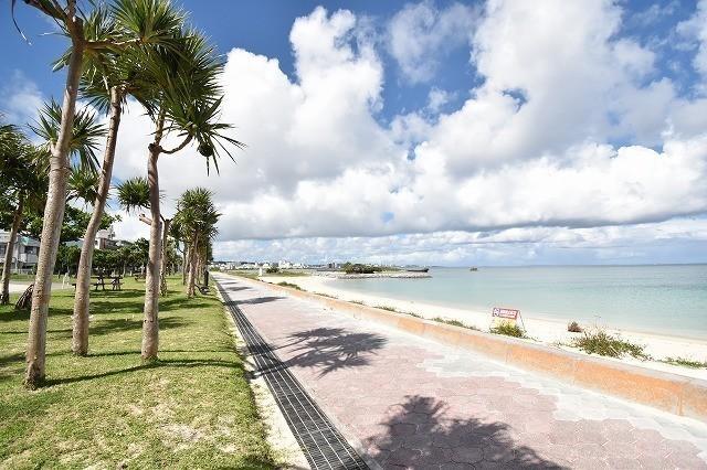 DAY0 沖縄旅行 ヤシの木が並ぶ遊歩道