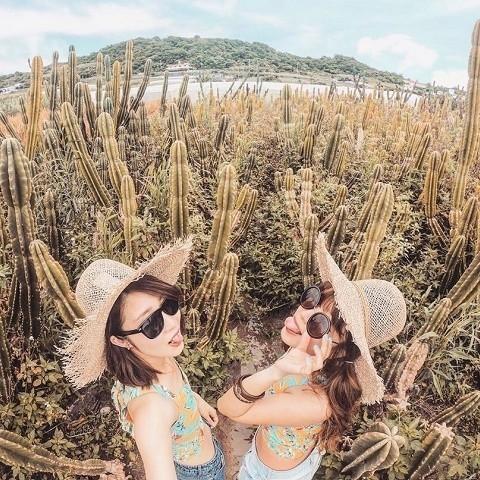 沖縄 インスタ映え 女子旅 南城市のサボテン畑