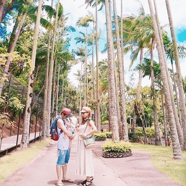 沖縄 インスタ映え 家族旅 東南植物楽園 ユスラヤシ並木で家族写真