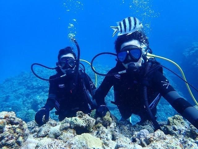 沖縄 2泊3日 モデルコース KJ MARINE ケラマブルーを堪能する2人のダイバー