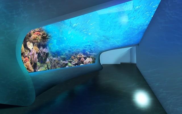 DMMかりゆし水族館 イメージ