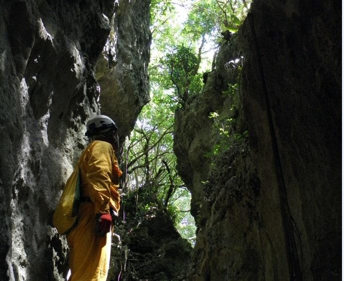 沖縄 女子旅 おすすめスポット ハンターバンの森