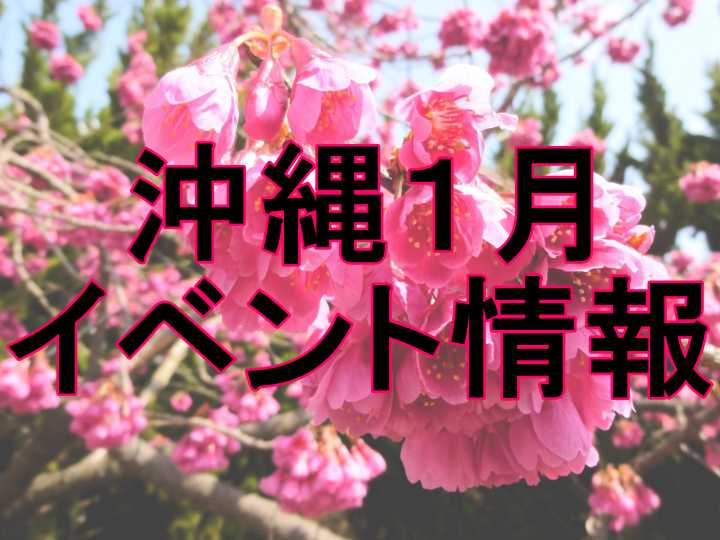 沖縄 1月 イベント