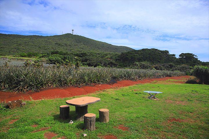 久米島 グルメ 赤嶺パイン園 パインジュース