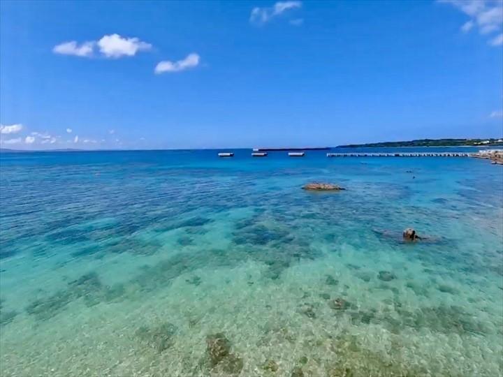 ゴリラチョップ 海