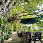 山の茶屋 楽水|緑に溶け込む隠れ家カフェから眺める沖縄の海